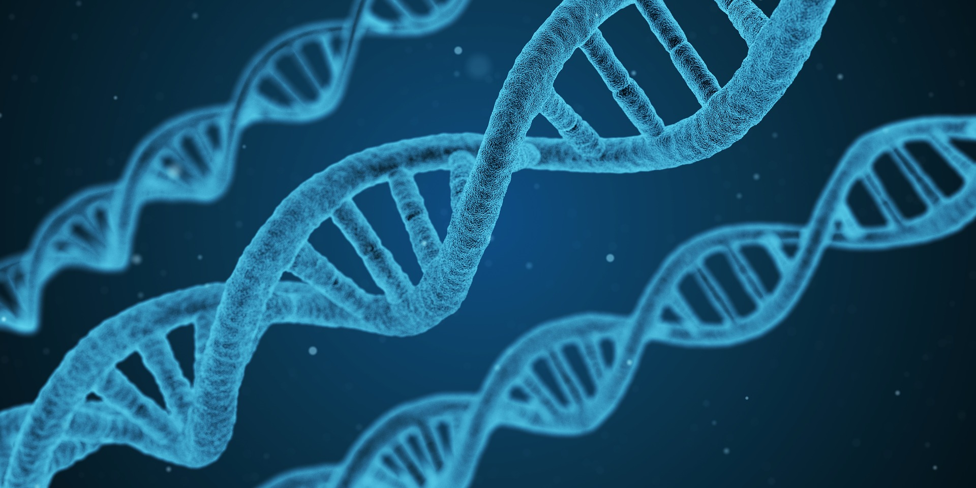 The Emerging Field Of Pharmacogenomics